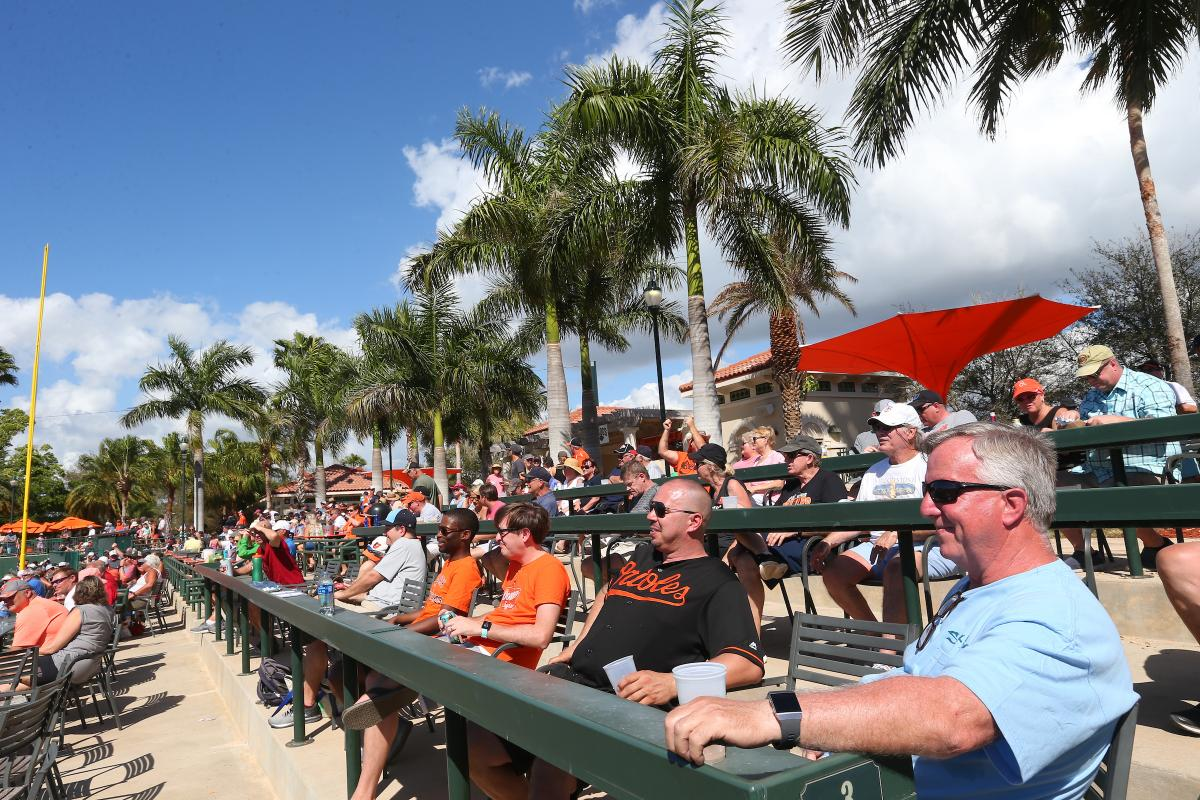 fans at a baltimore orioles spring training game