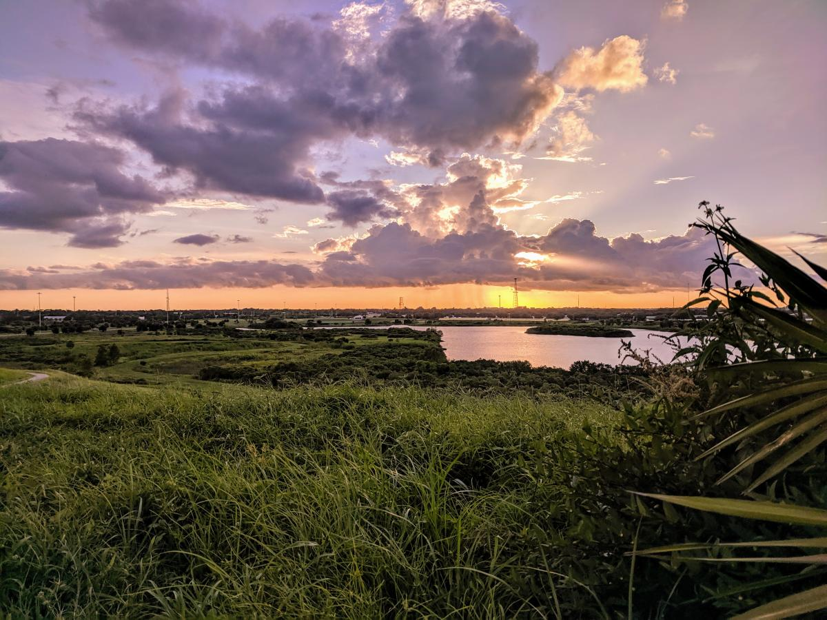 sunset view from top of a hill at the celery fields in sarasota florida