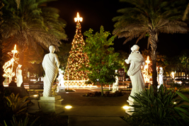 Help us show visitors where to eat, shop  and spend their holidays around #MySarasota.