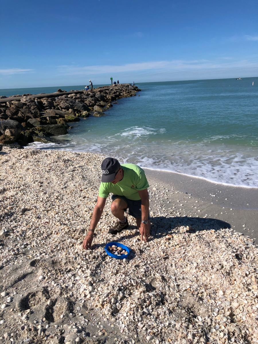man grabbing shells on nokomis beach