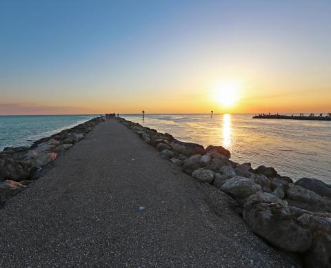Venus Beach Florida >> Venice Venice Beach Florida Visit Sarasota