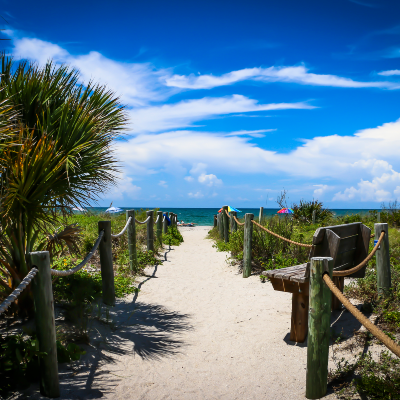 Pathway leading to a beach
