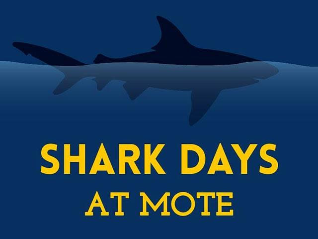 2019 Shark Days at Mote: Real Sharks, Real Science