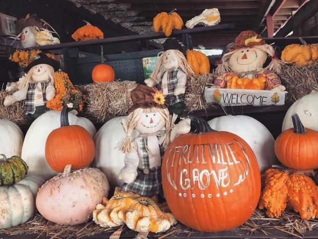 32nd Annual Pumpkin Fest