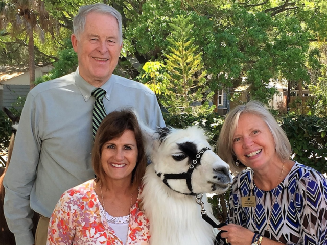 Llamas Visit Alderman Oaks - We Welcome Visitors From All Walks of Life!