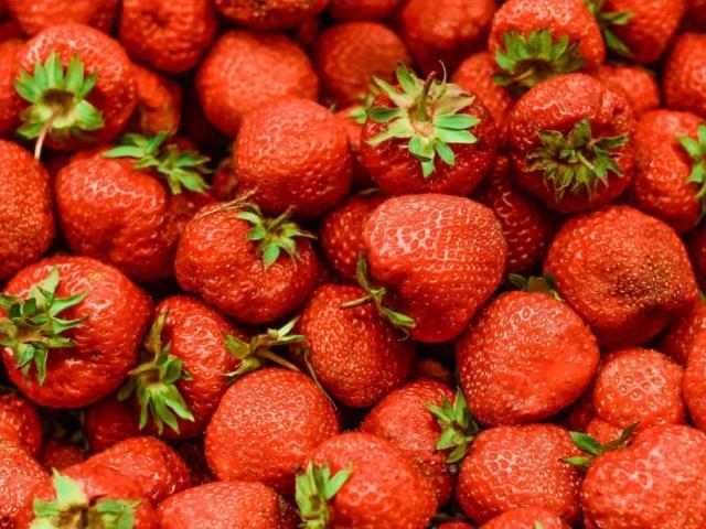 Arlington Park Florida Strawberry Festival Trip