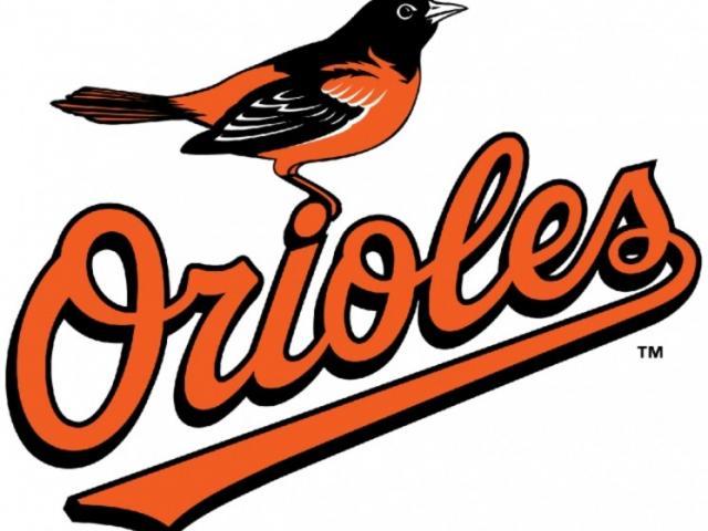 774_640x515.jpg - Baltimore Orioles Bird