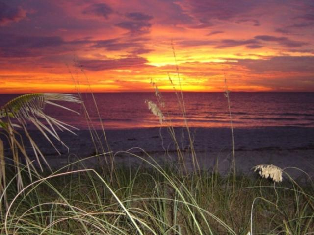 16_737x480.jpg - Englewood Beach at Sunset