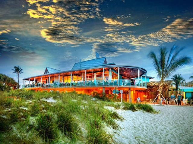 Savor Sarasota: Fins at Sharky's | Visit Sarasota