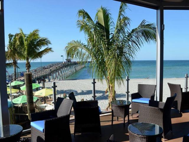 Fins Frenzy: Daily Happy Hour