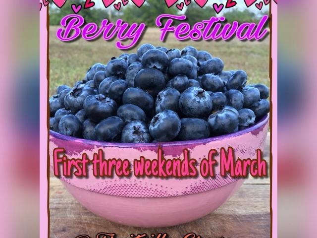 Fruitville Grove Berry Fest