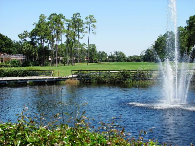 Sawgrass lake view - Sawgrass is part of the 27 holes at Waterford Golf club.
