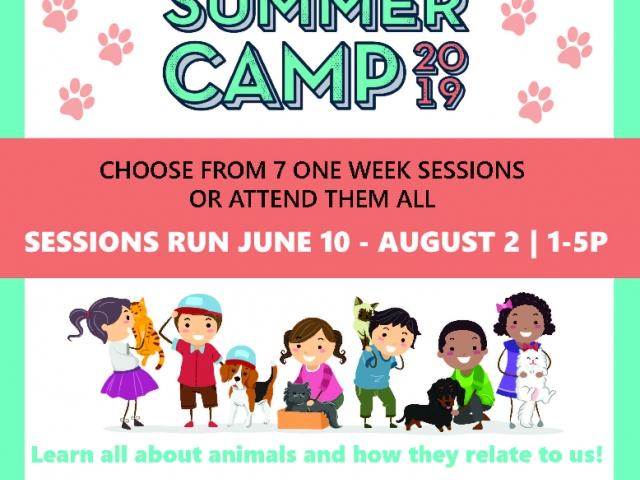 HSSC's Fur Fun Summer Camp