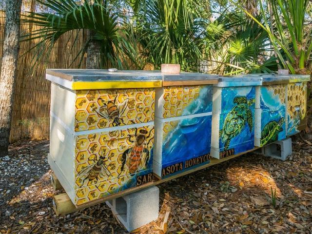 Intro and Intermediate Beekeeping Seminar