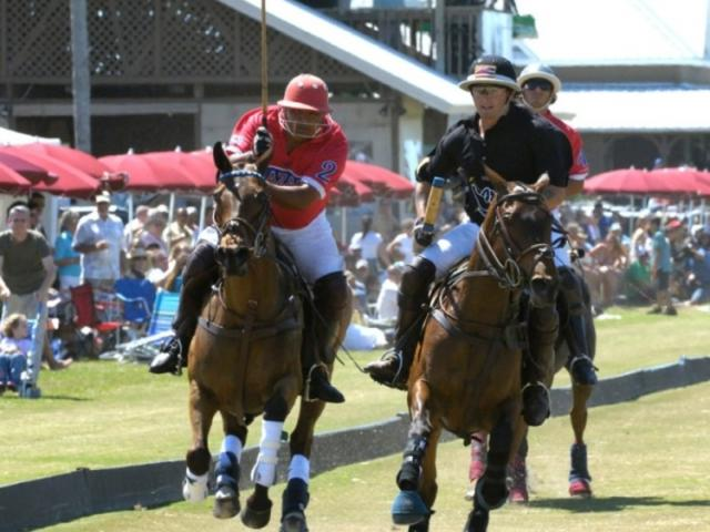 548_640x512.jpg - Polo at Sarasota Polo Ground