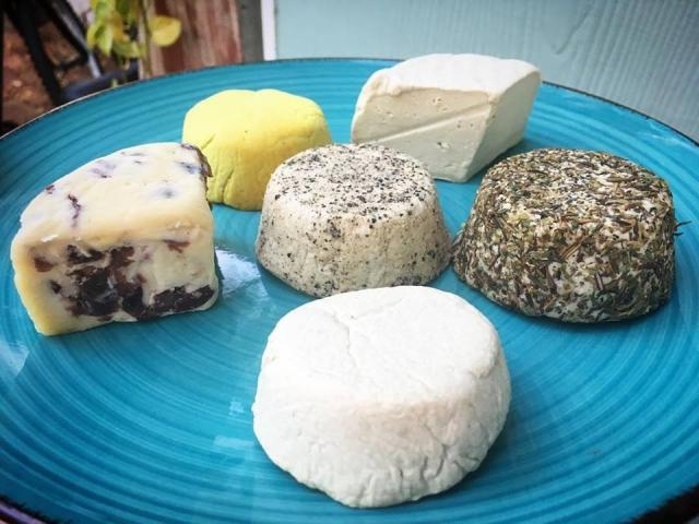Making Vegan Cheese