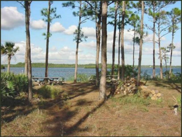 1241_640x481.jpg - Myakka River Camp Site