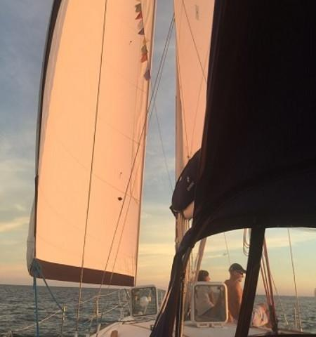 Sunset Sailing - Have dinner with a view on a sunset sail!