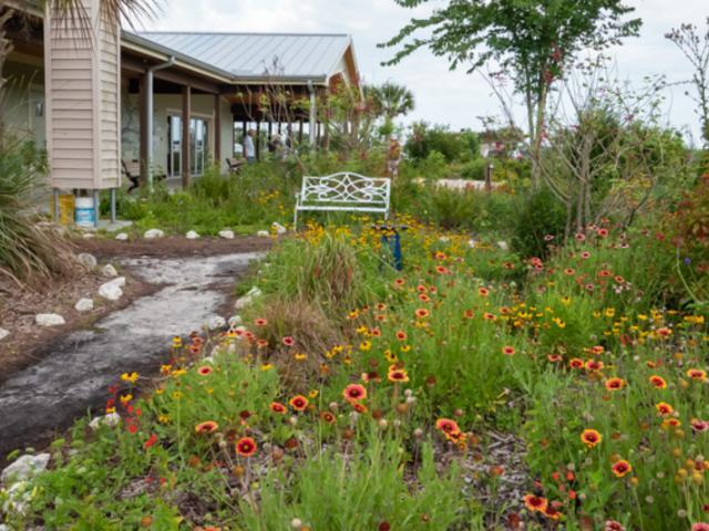 Sarasota Audubon Society | Visit Sarasota on house wren house plans, purple martin house plans, pvc bluebird house plans, national wildlife bird house plans,
