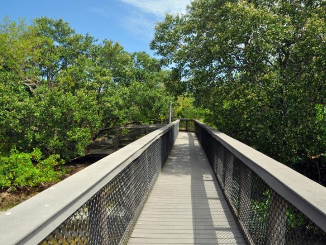 Sarasota Bay Walk