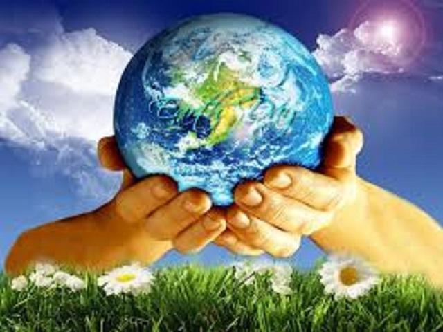 Sarasota Holistic Chamber of Commerce - Live Green