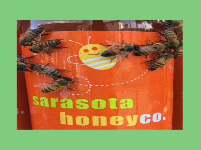Sarasota Honey Bee Tour