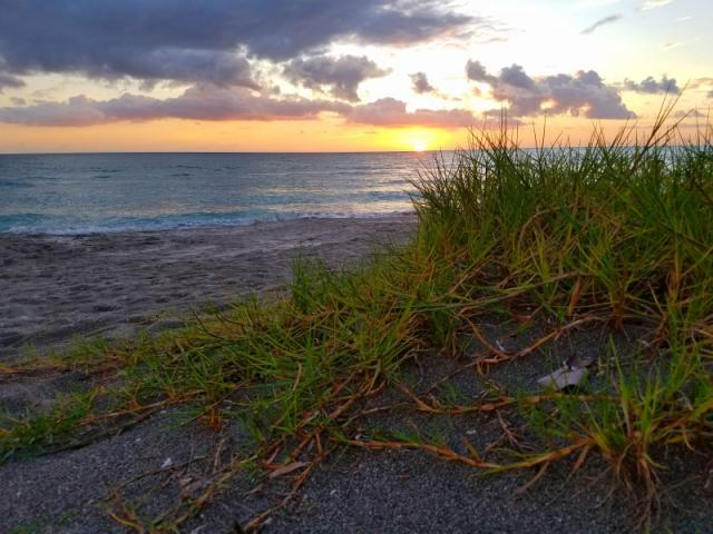 Turtle Beach Park - Sunset and Sand Dune