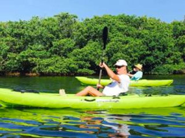 Family Mangrove Tour - Mangrove Tunnel and Hidden Beach Tour!