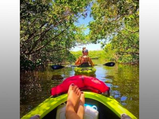 Just relaxing! - Cruising through some mangrove tunnels!!