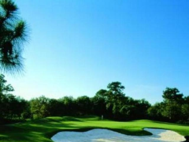 478_640x480.jpg - Majestic oaks and slash pines create a dramatic backdrop for our 27 holes of championship golf