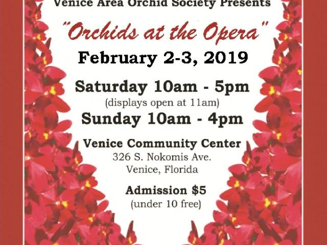 Orchid show orchid sale