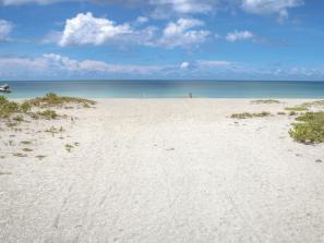 chauncy howard park beach in venice, florida