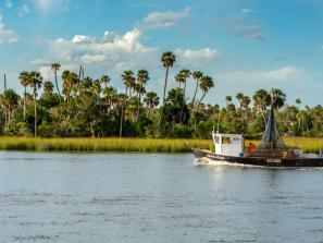 Crystal River on the west coast of Florida PHIL LOWE/SHUTTERSTOCK