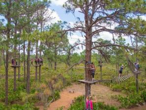 $5 Off Adventures at TreeUmph! Adventure Course
