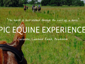 EEE Horse Ears