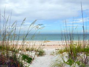 North Lido Beach Park - The park contains an upland area with 49 acres of Australian pine woods, grassy savannahs and walking trails, plus 22.5 acres of beach and mangroves. Bird nesting areas on the beach are protected and visitors should be careful not to disturb the nests.