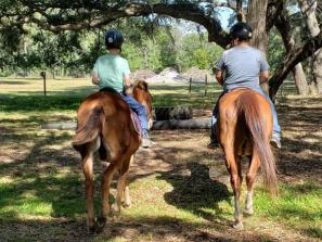 All age trail ride - We do introductory trail rides for the whole family, ages 5 and up!