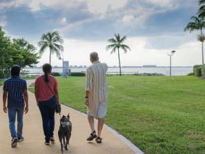 The Bay walk