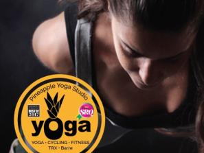 Yoga Flow (Vinyasa)