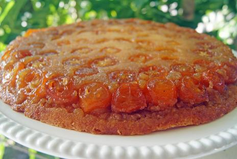 Completed Kumquat Cake. Photo by Robin Draper.