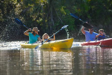 Kayaking in Sarasota County