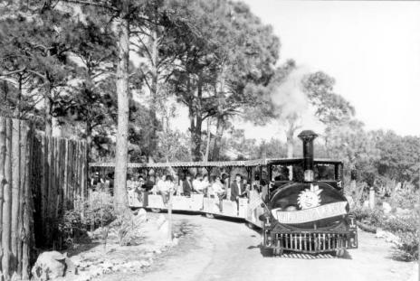 train driving people around an amusement park