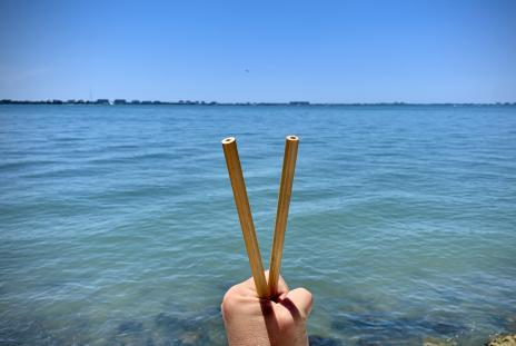 reusable straws in front of sarasota bay