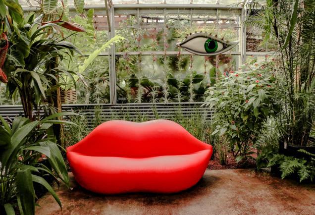 botanical garden exhibit at selby gardens in sarasota florida