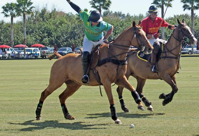 Sarasota Polo Club.  Photo credit: Robin Draper.