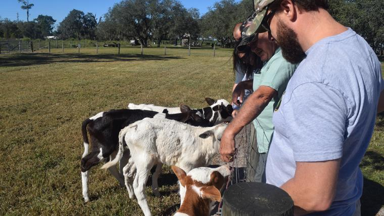 Dakin Dairy Farm, photo by Vanessa Caceres