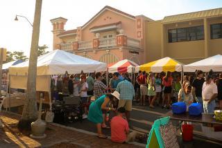 Festivals Galore in Sarasota County