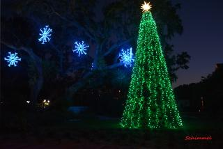 Selby Gardens, Lights in Bloom - Photo by Norman Schimmel