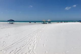 the sand on siesta key beach