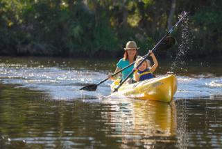 two people kayaking in Sarasota County